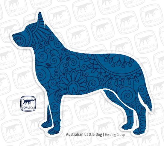 548x487 Australian Cattle Dog Decal