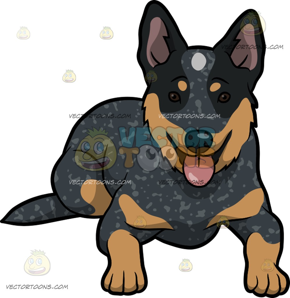 996x1024 A Cute Australian Cattle Dog Cartoon Clipart Vector Toons