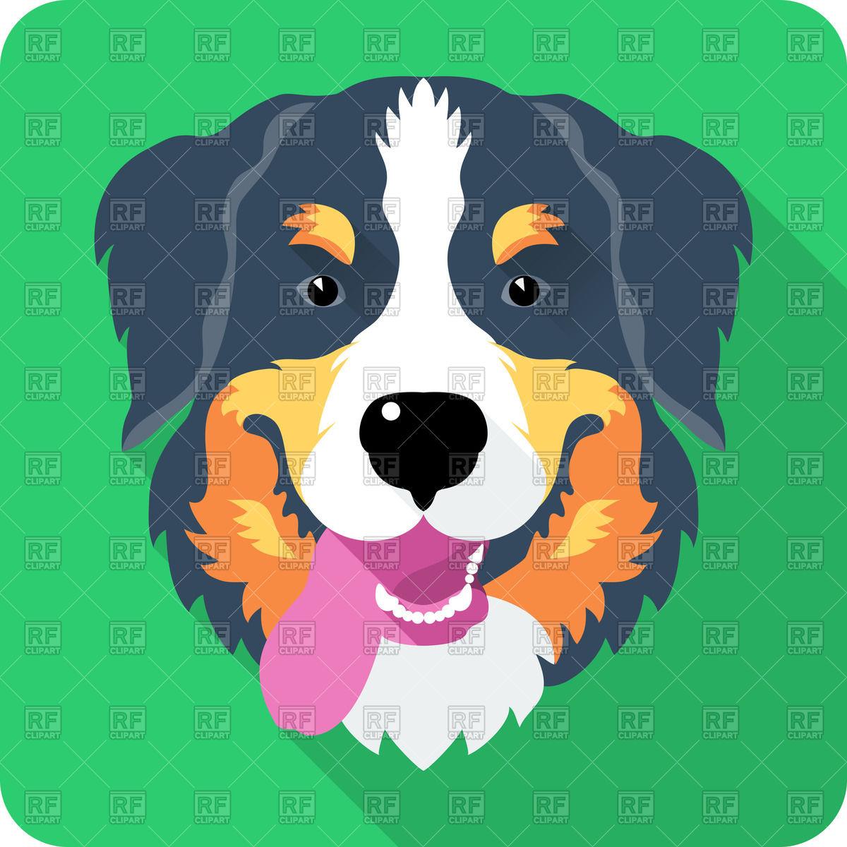 1200x1200 Head Of Bernese Mountain Dog