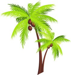 236x251 Palm Tree Png Images, Download Free Pictures