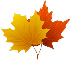 236x202 Autumn Leaves Branch Png Clipart Image