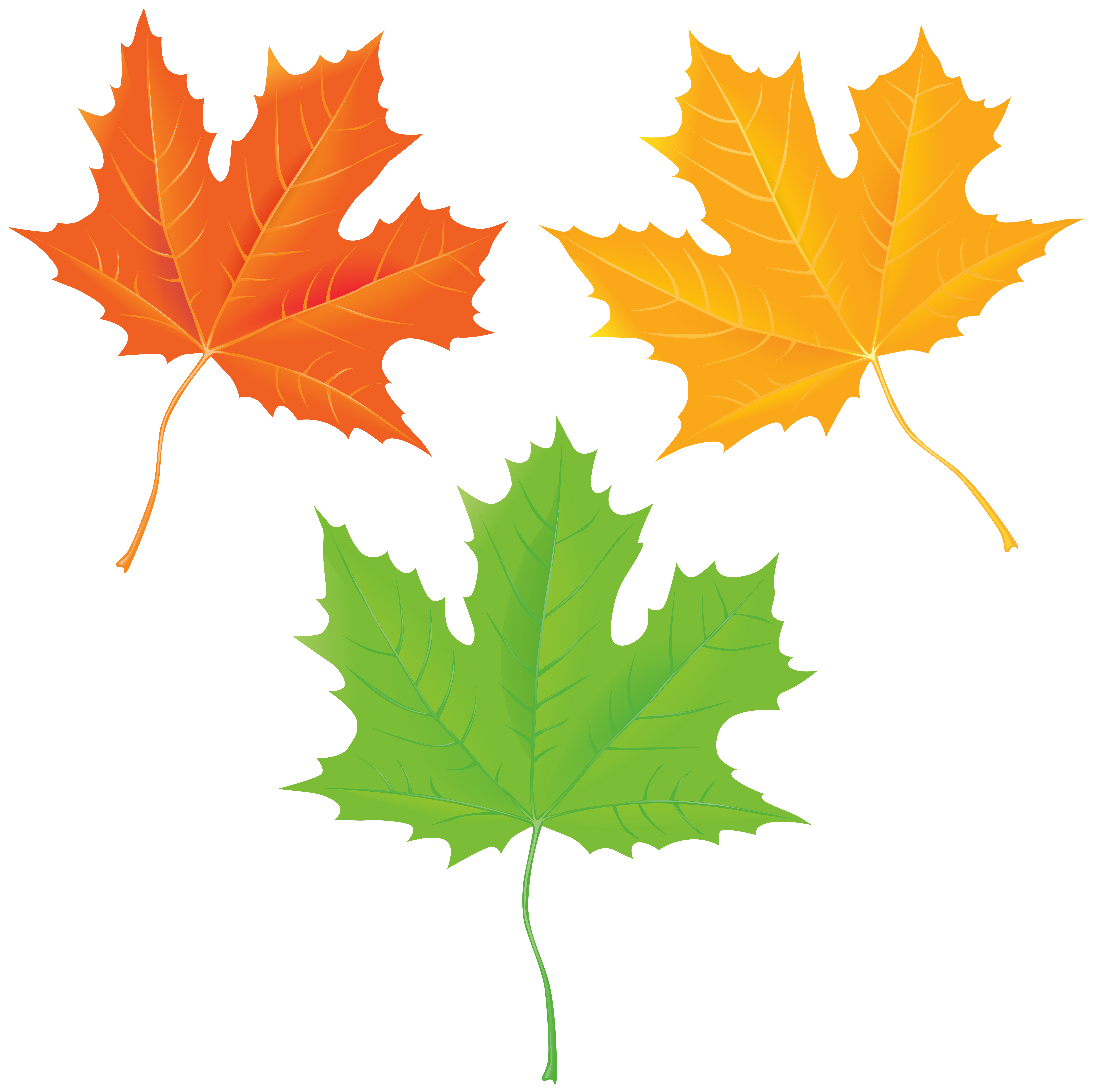 Autumn Leaves Clipart at GetDrawings | Free download