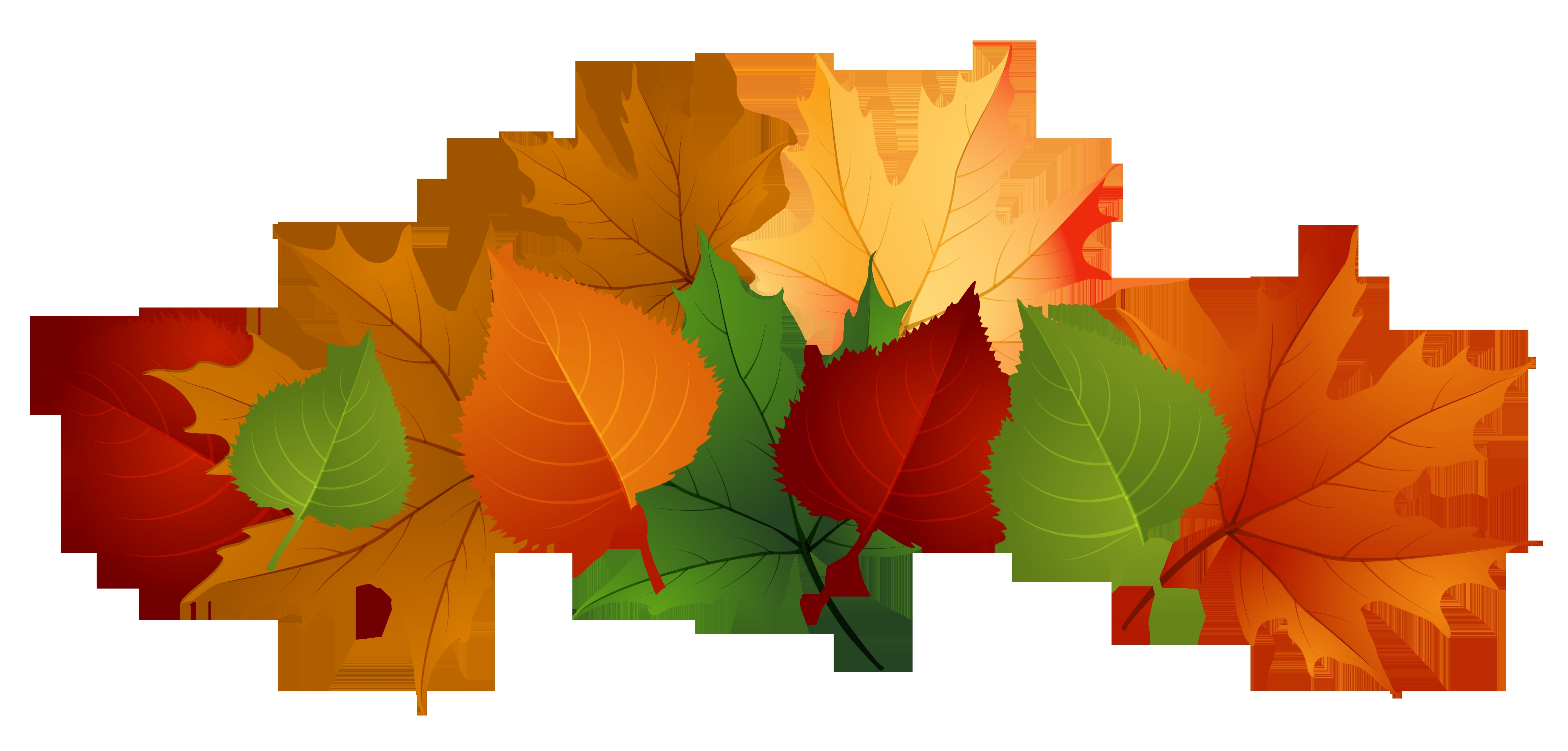 4153x1988 New Leaves Clipart Design