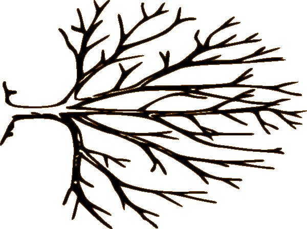 600x448 Barren Clipart Autumn Tree