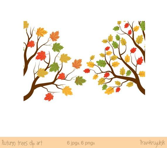 570x505 Autumn Tree Clip Art, Fall Tree Clipart, Oak Tree Clip Art, Maple