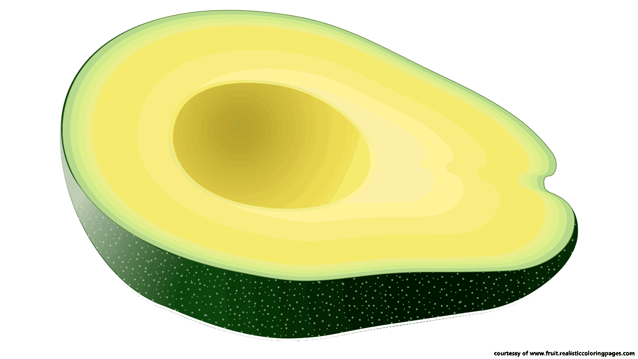 1280x720 14 Great Avocado Fruit Clipart Free Download