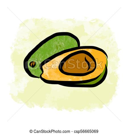 450x470 Colored Drawing Of Avocados. Fresh Design Of Colorful Fruits