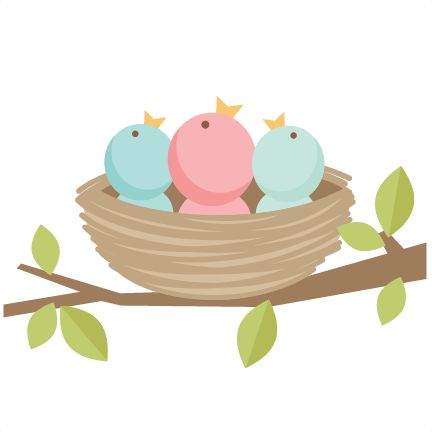 Baby Bird Clipart