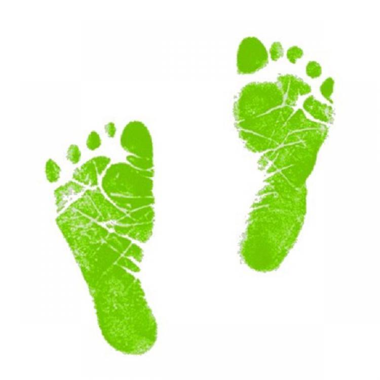 750x750 Green Baby Footprints Clipart
