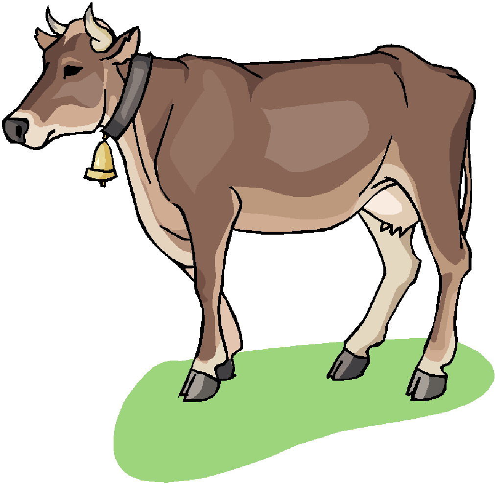 1011x988 Collection Of Swiss Cow Clipart High Quality, Free Cliparts