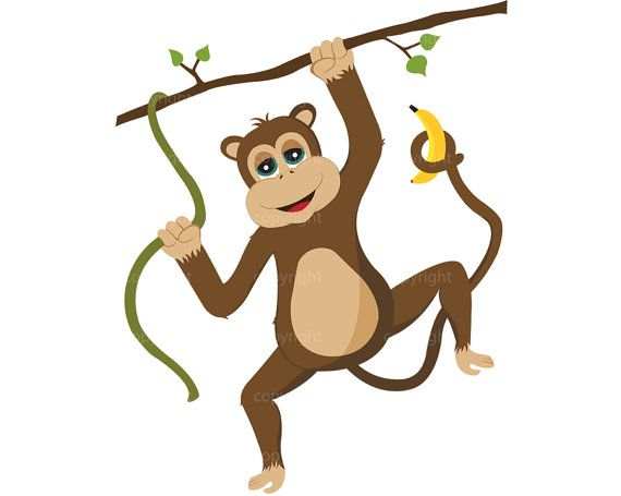 570x455 55 Best Monitos Images On Monkeys, Monkey And Dungarees