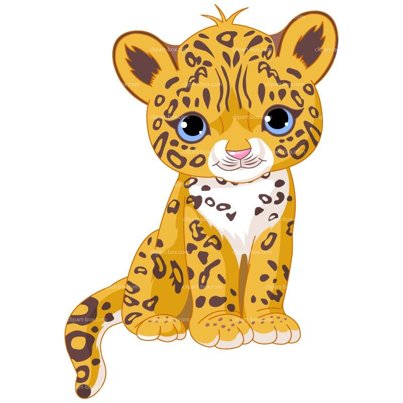 800x800 Clipart Baby Jaguar Sit Royalty Free Vector Design Pic