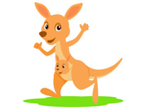 baby kangaroo clipart at getdrawings com free for personal use