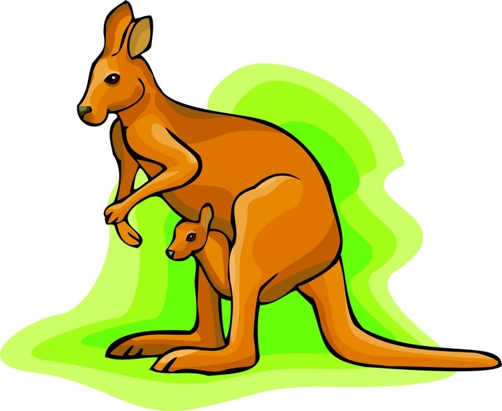 720x589 Kangaroo Cliparts Footpints Free Download Clip Art Free Clip