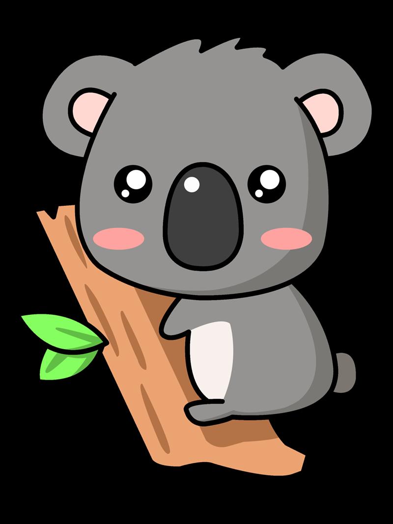 800x1067 Face Clipart Koala