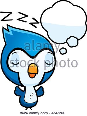 300x403 A Cartoon Illustration Of A Baby Blue Jay With A Blank Sign Stock