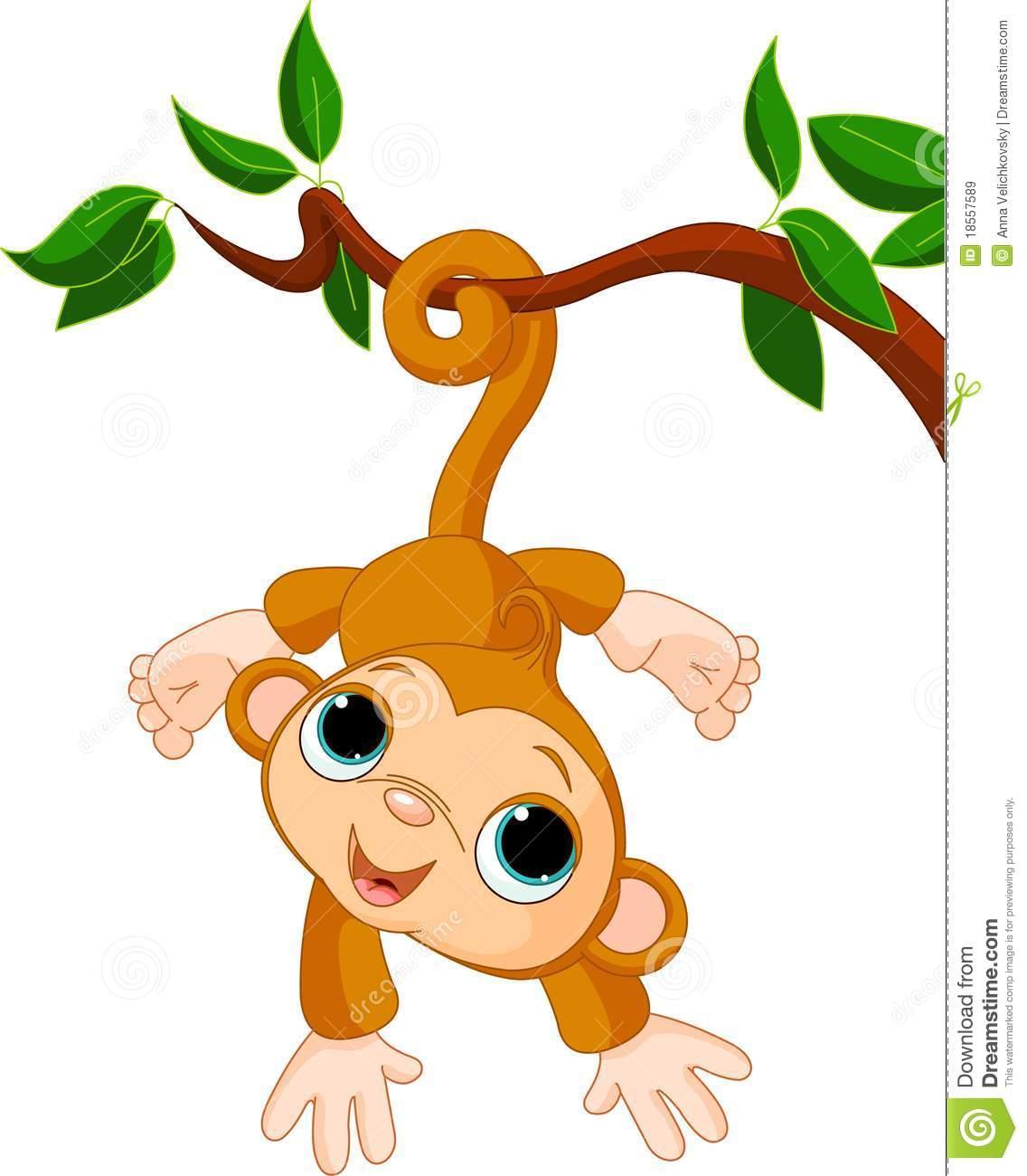 1136x1300 Best Photos Of Baby Monkey Clip Art