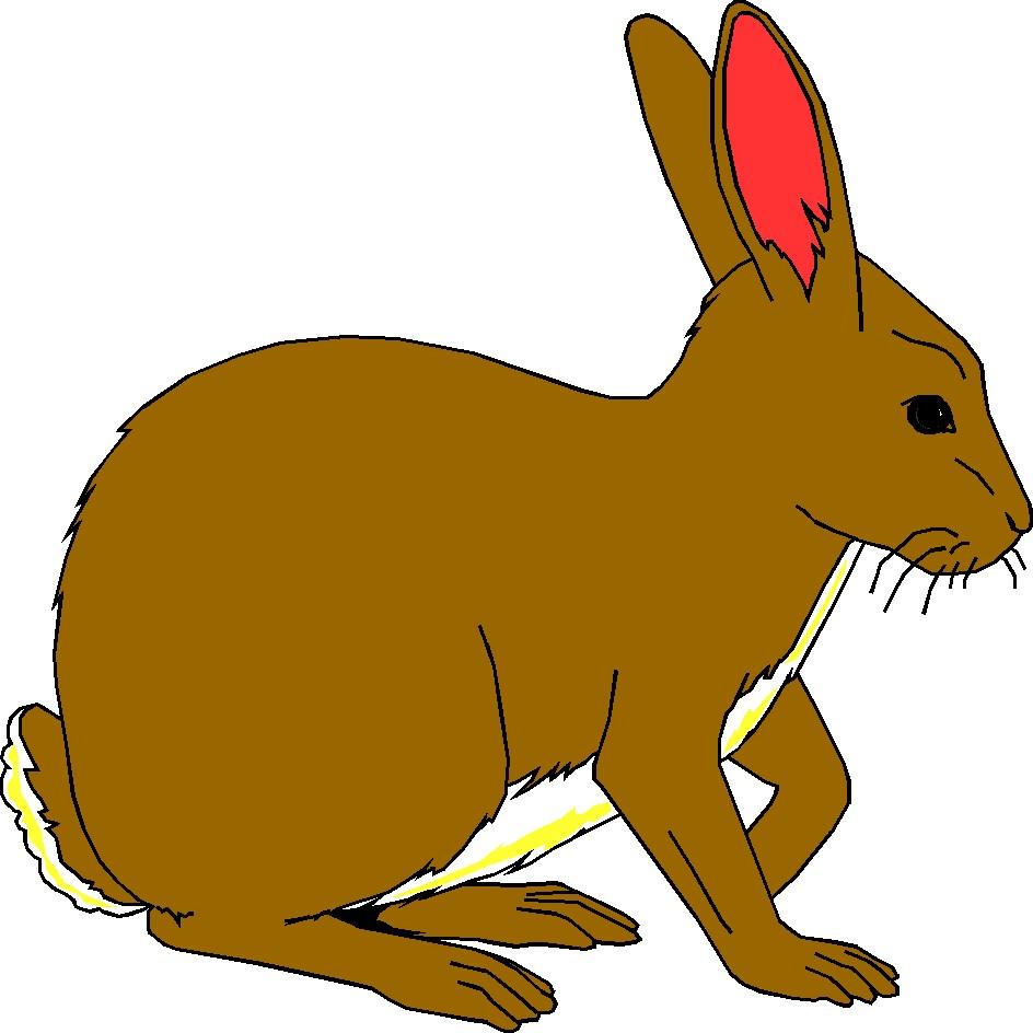 944x944 Bunny Clip Art Cartoon Images