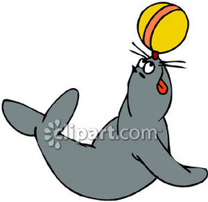 300x291 Seal With Ball Clipart Group