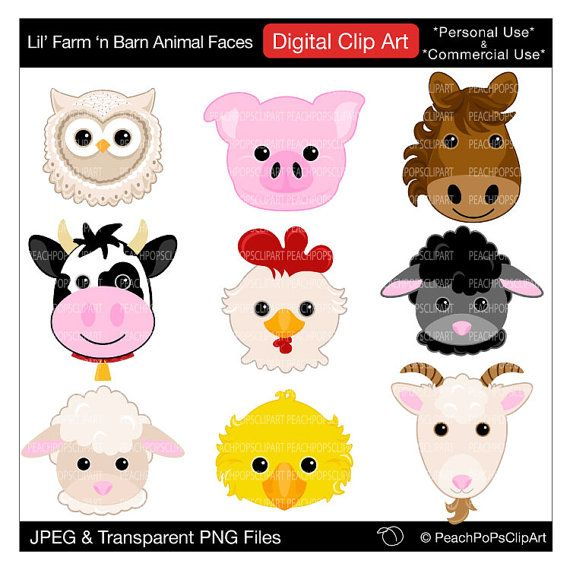 Baby Sheep Clipart