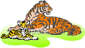 300x169 Intricate Clipart Tiger Vector Cartoon Cliprt Illustration