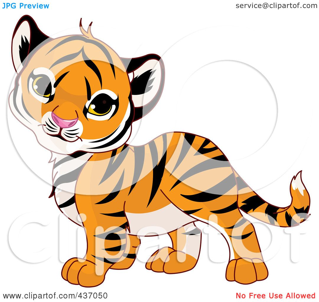 1080x1024 Royalty Free (Rf) Clipart Illustration Of A Cute Baby Tiger