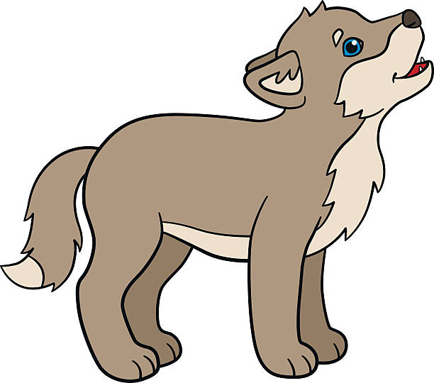 612x540 Wolf Clipart Baby Wolf Free Collection Download And Share Wolf