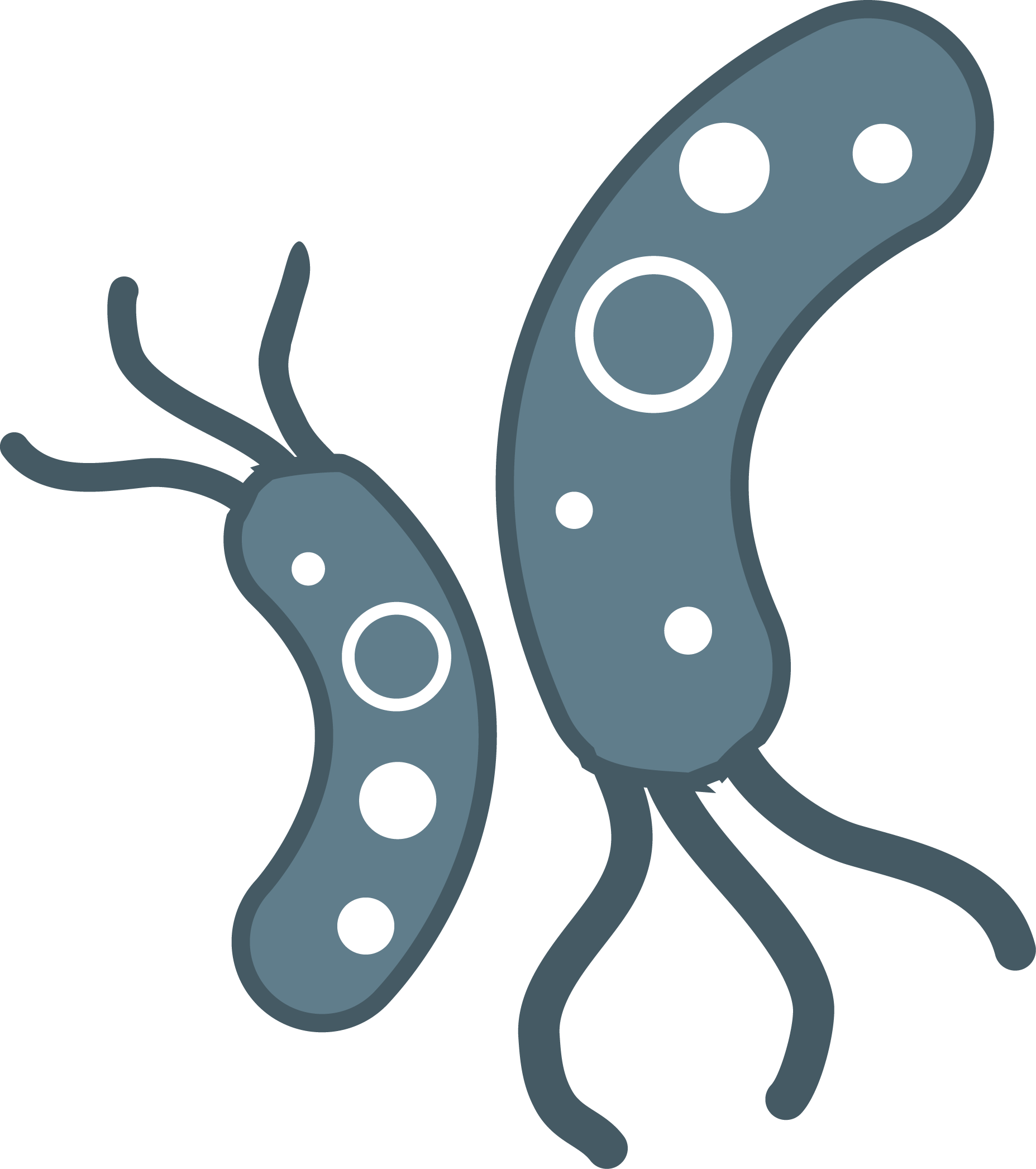 Bacteria Clipart at GetDrawings.com | Free for personal ...