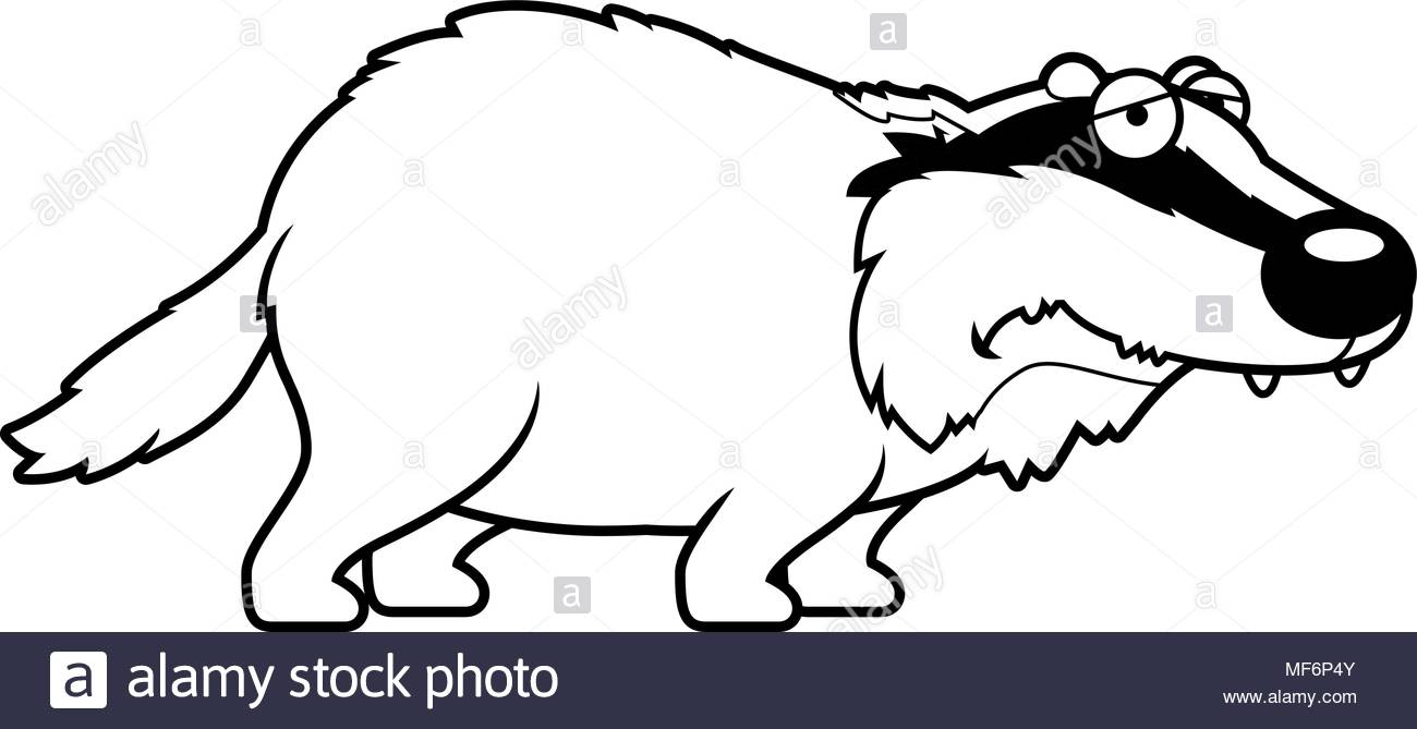 1300x669 A Cartoon Illustration Of A Badger Looking Sad Stock Vector Art