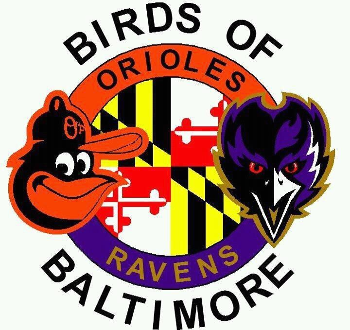 720x679 278 Best Deep In Purple Images On Baltimore Ravens