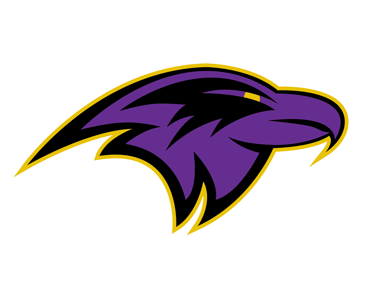 1200x927 Baltimore Ravens Logo Concept On Behance