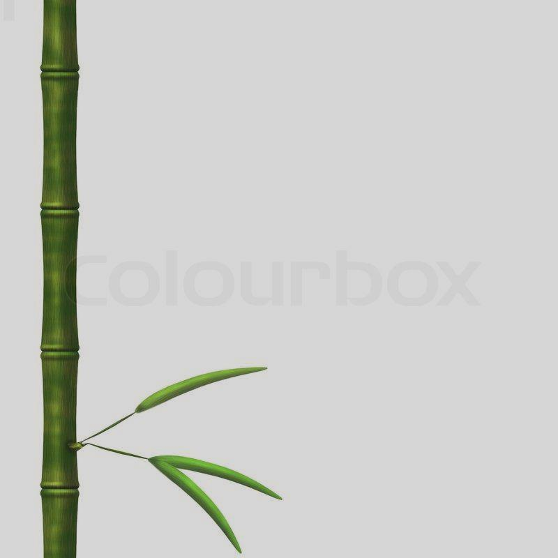 800x800 Bamboo Stick Clipart
