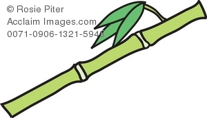 300x172 Clip Art Illustration Of A Bamboo Stem
