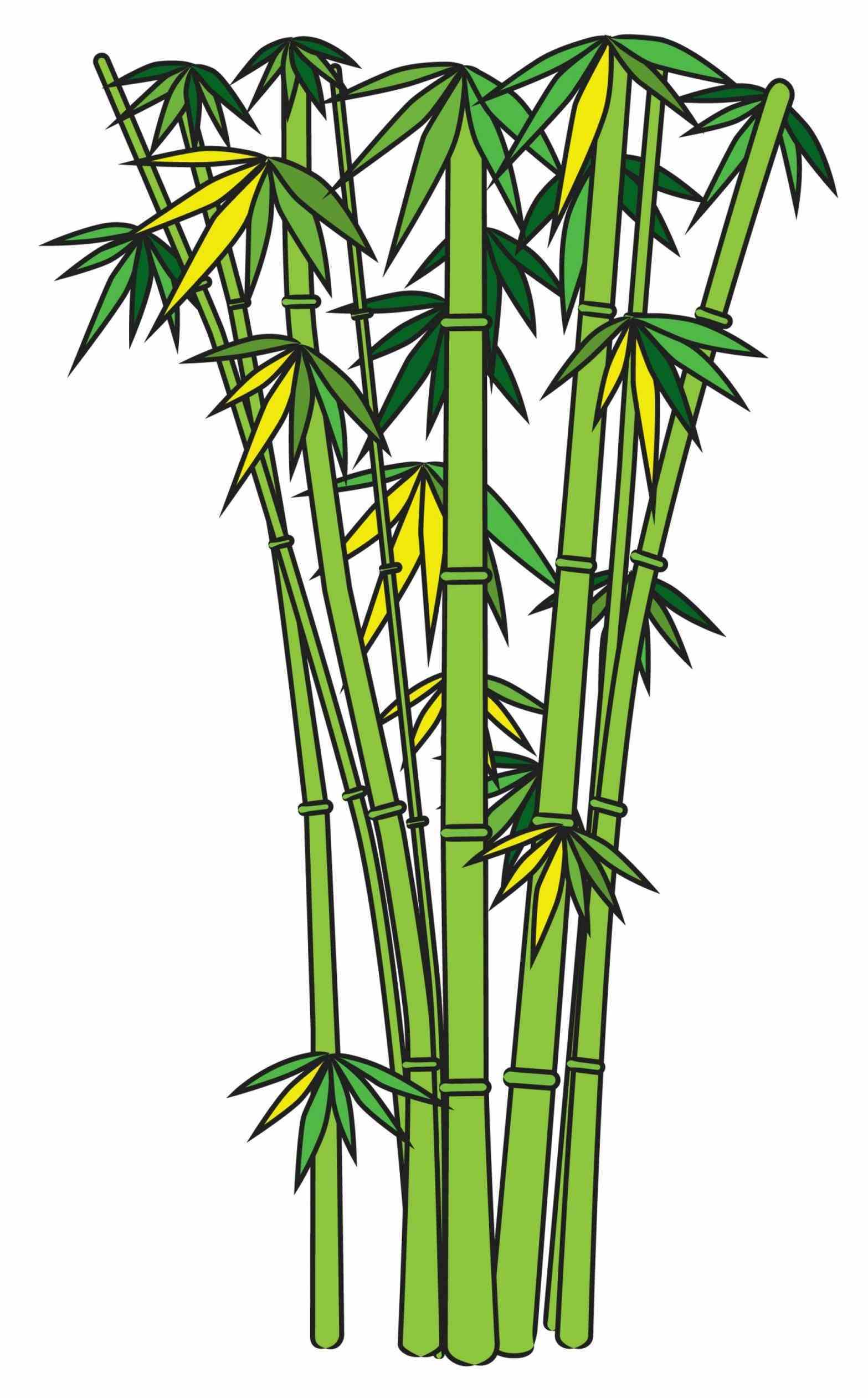 bamboo clipart at getdrawings com free for personal use bamboo rh getdrawings com bamboo images clip art bamboo clipart design