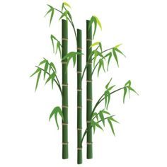 236x236 Bamboo Clip Art Graphic Bamboo Shoots Leaves Plant Nature Clipart