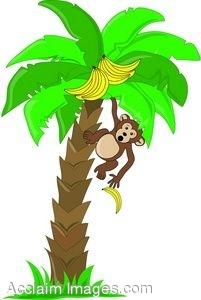 201x300 Clip Art Of A Monkey In A Banana Tree Dropping A Banana