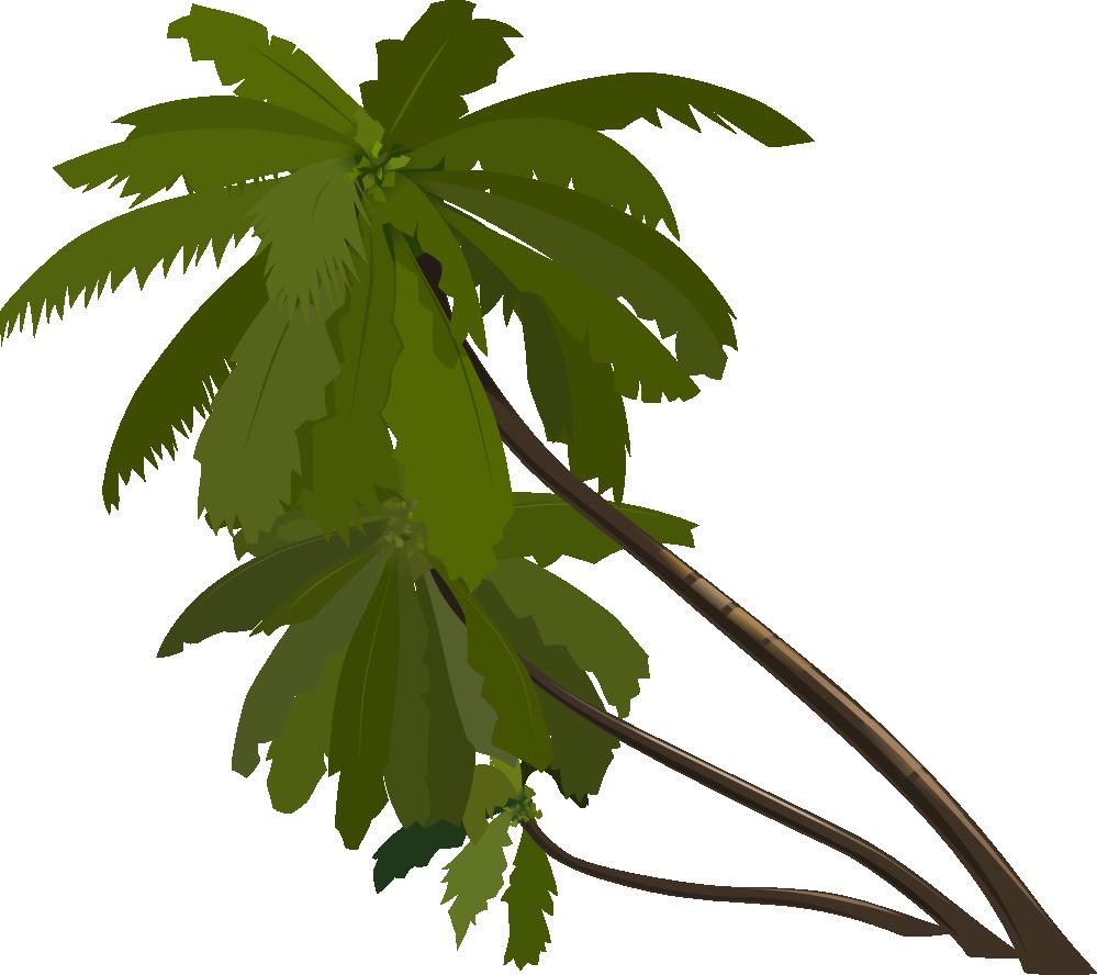 999x888 Palm Tree Clip Art Png Clipart Panda