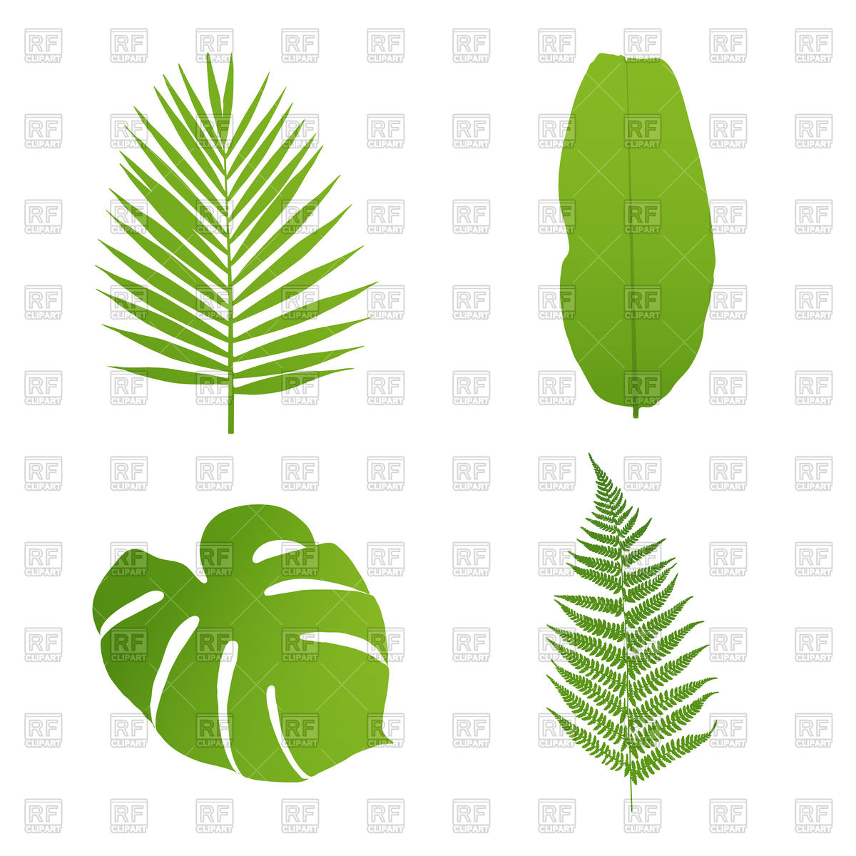 1200x1200 Set Of Tropical Leaves