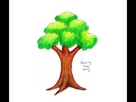 480x360 Download How To Draw Trees Easy , For Kids , Beginners Drawing
