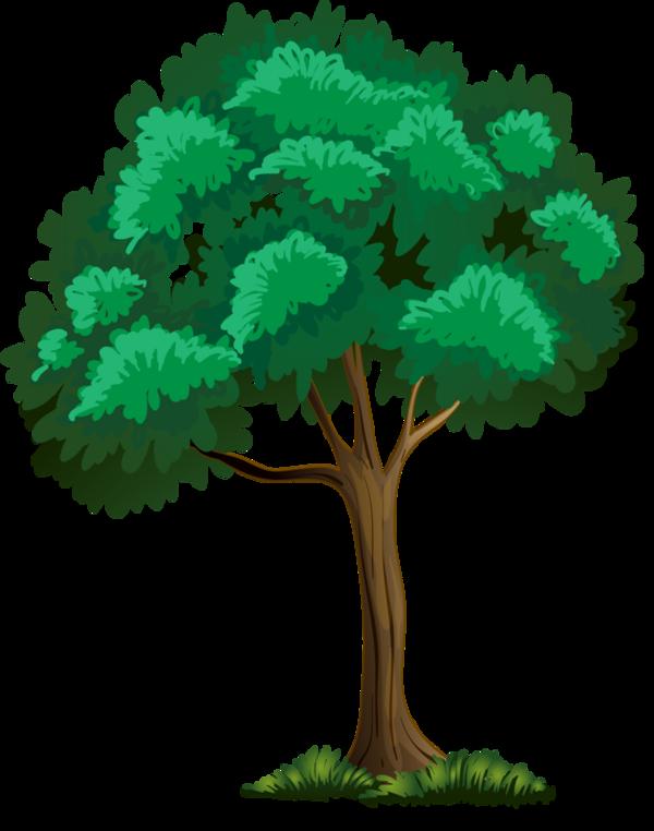 600x762 Trees Printsticker Flora Clip