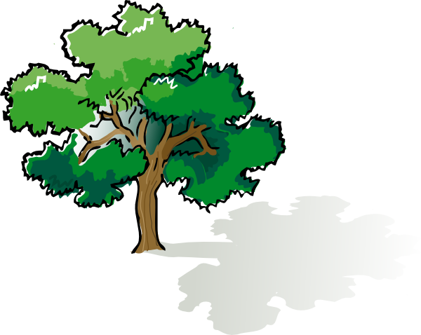 600x478 Oak Tree Outline Clip Art