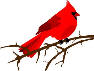 300x227 Red Cardinal Clipart
