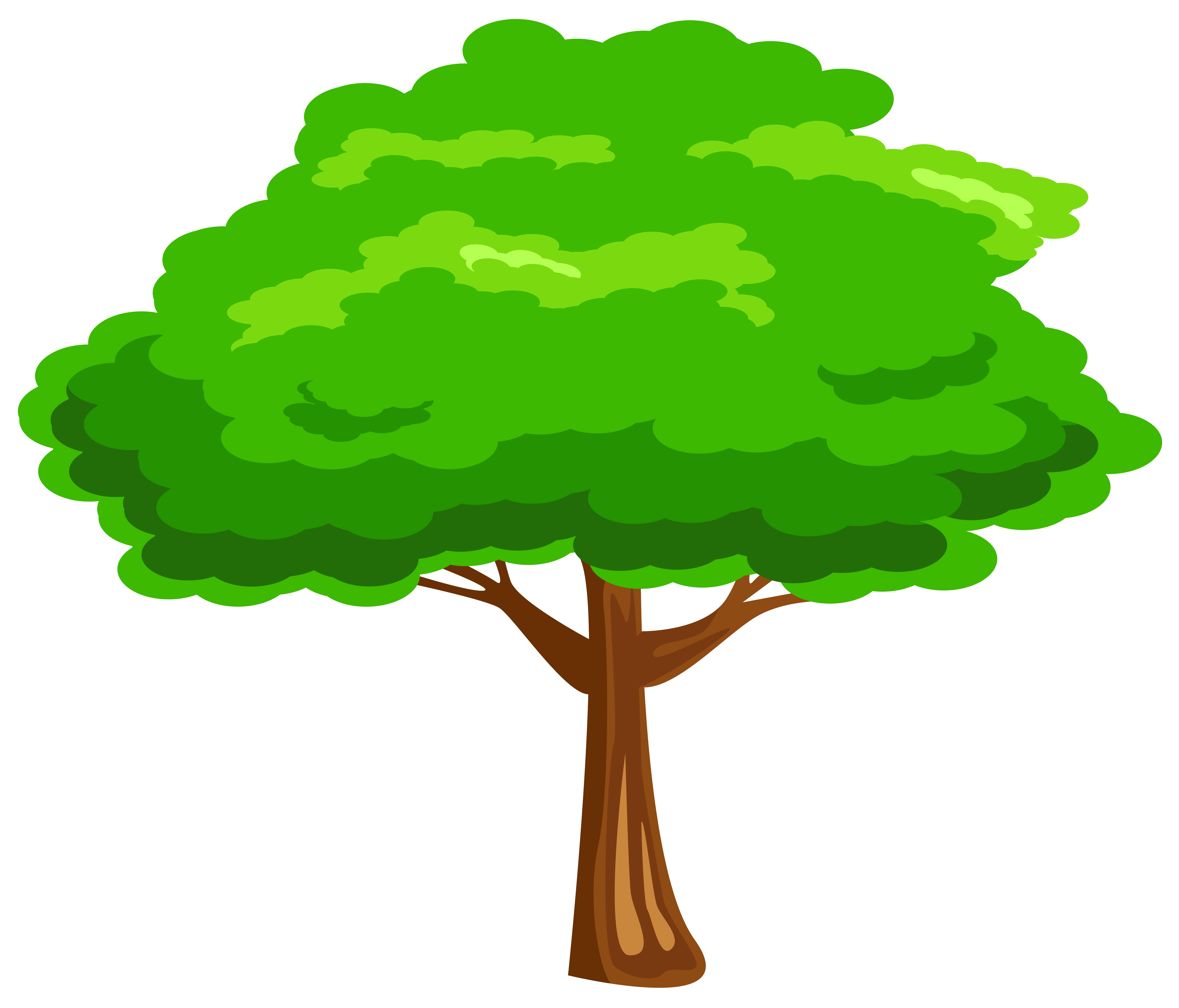 6312x5396 Free Tree Clipart Images And Pictures
