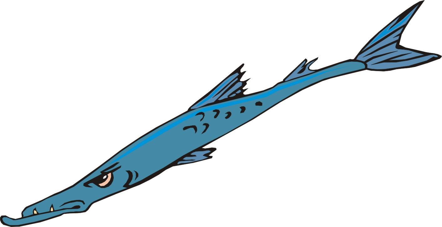 1412x728 Images Of Barracuda Cartoon