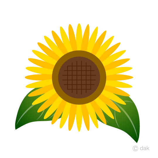 540x540 Free Simple Sunflower Clip Art Cartoon Amp Clipart