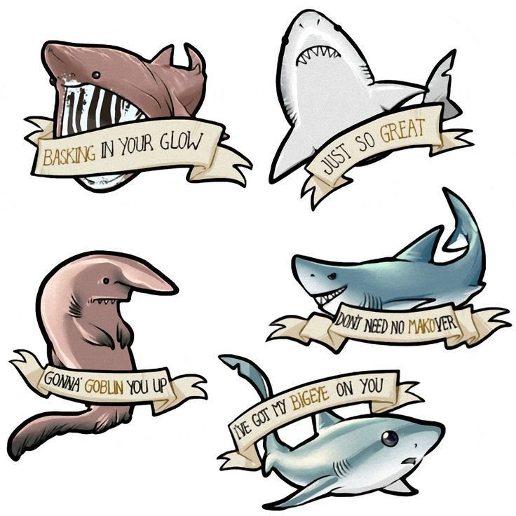 Basking Shark Clipart