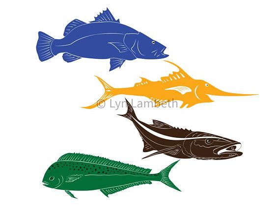 570x428 Fish Clipart, Instant Download, Barramundi Clip Art, Mahi Mahi