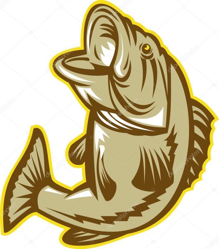 705x800 Bass Fish Clipart