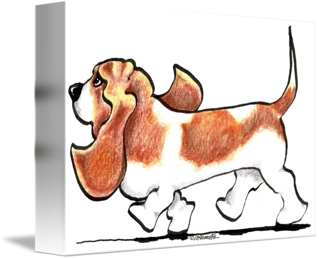 650x529 Busy Basset Hound By Off Leash