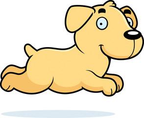 294x240 Cartoon Basset Hound Running